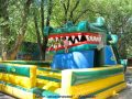 «Крокодил»